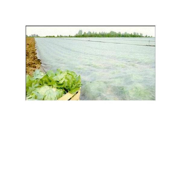 Manta térmica agrícola 4.10x100m