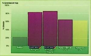 Eficacia de Flint Max sobre estemfiliosis en ajo